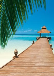 Paradise Beach 00376