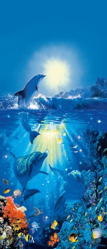 Dolphin in the Sun 00513